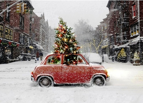 Christmas-tree-car-in-the-snow.jpg