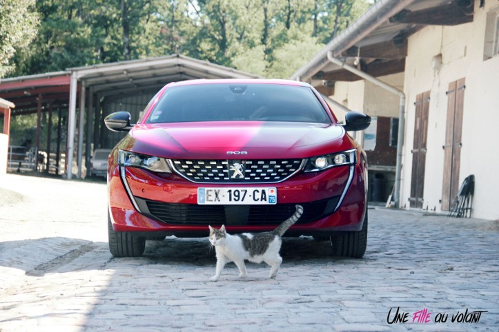Peugeot 508 GT Line PureTech 180 EAT8 face avant statique