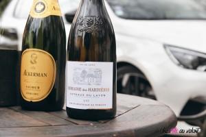 Peugeot 308 GTi détail vin coteau du layon