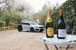 Peugeot 308 GTi sportive lifestyle vin