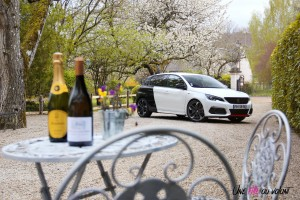 Peugeot 308 GTi lifestyle avant calandre vin ackerman