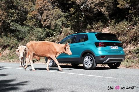 Volkswagen T-Cross bleu arrière bouclier TSI